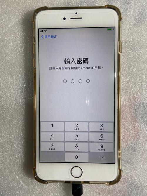 輸入螢幕密碼